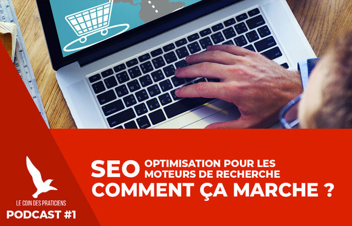 comprendre-referencement-naturel-seo-therapeute